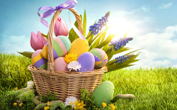 Events munno para shopping city south australia easter negle Images